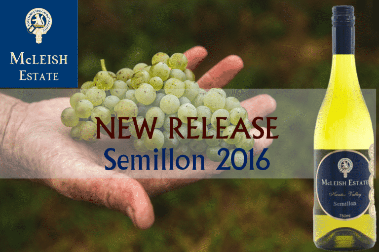 Highly Anticipated Release of the 2016 McLeish Estate Semillon -