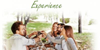 Budburst Festival - A regional picnic feast. -